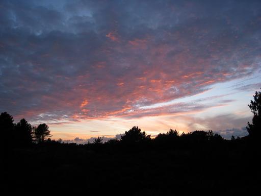 Solnedgang over heden