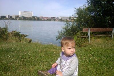 Ellen kigger efter far der logger Viborg Søndersø.