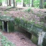 Læg mærke til træerne ovenpå bunkeren
